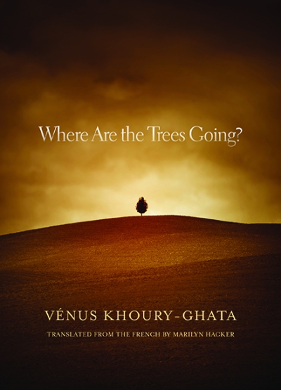 where-are-the-trees-going-